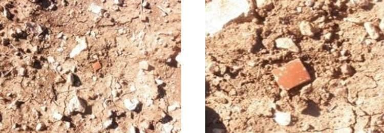 Fragmento de terra sigilata de Las Talyas.