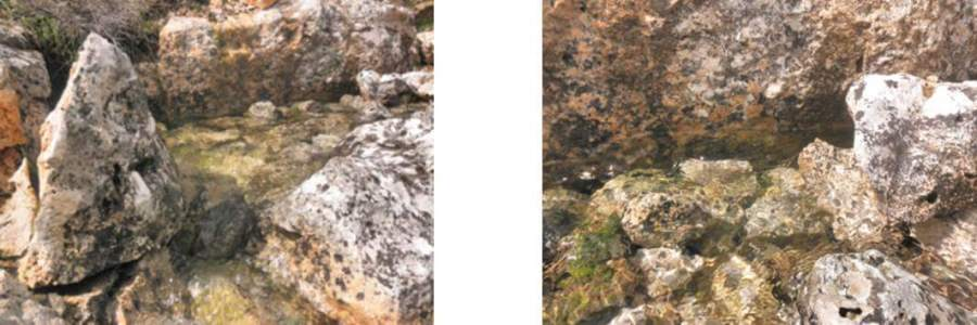 la-raposera-2b